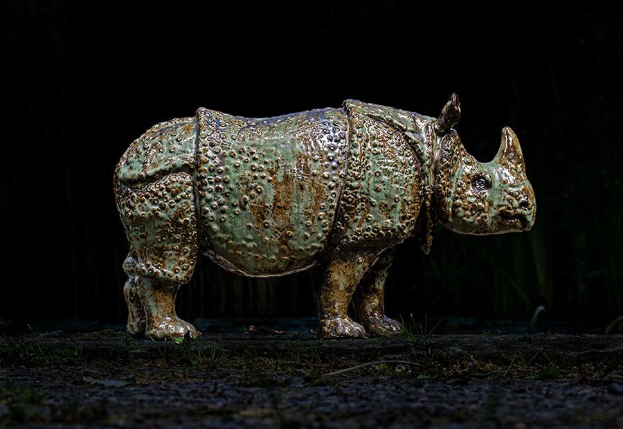 Nashorn von Horst Stockdreher